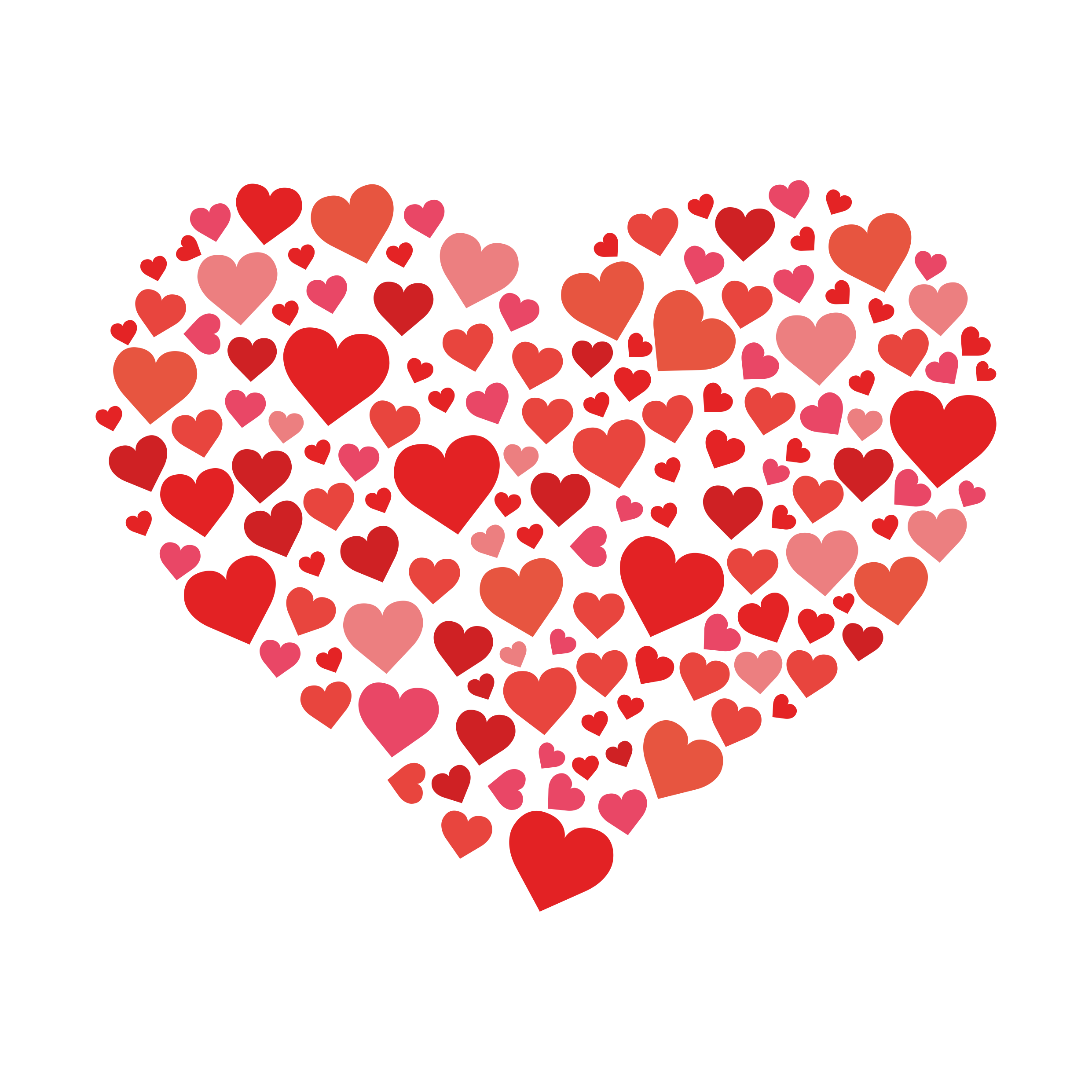 Kalplerden kalp