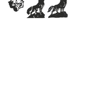 bozkurt Logo