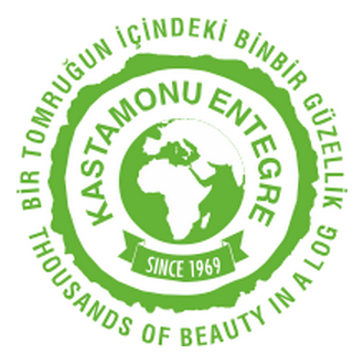 Kastamonu Entegre logosu Logo