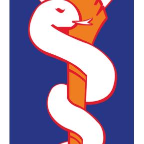 Medikal Kurtarma Logo