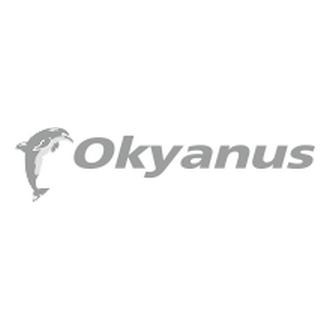 Okyanus turizm Logo