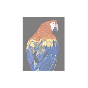 parrot 2 Logo