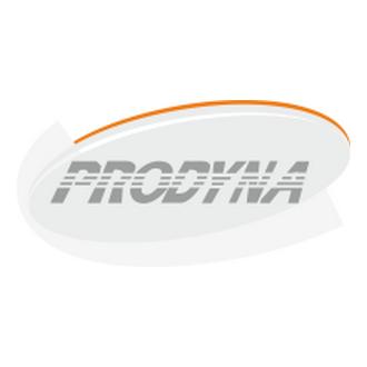 Prodyna Bilişim Logo