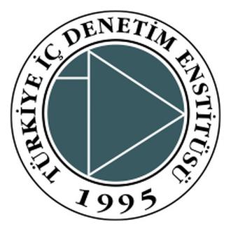 Türkiye İçdenetim Enstitüsü Logo