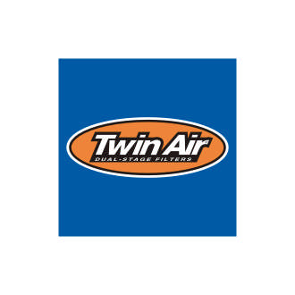 Twin Air Logo