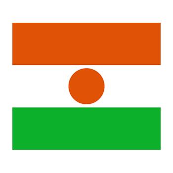 Nijer Bayrağı Vector