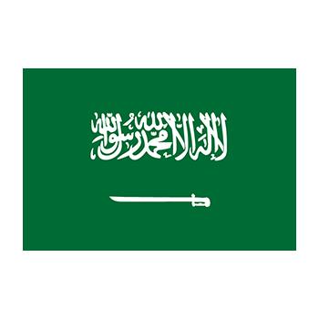 Suudi Arabistan Bayrağı vector