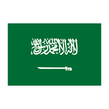 Flag of Saudi Arabia Vector